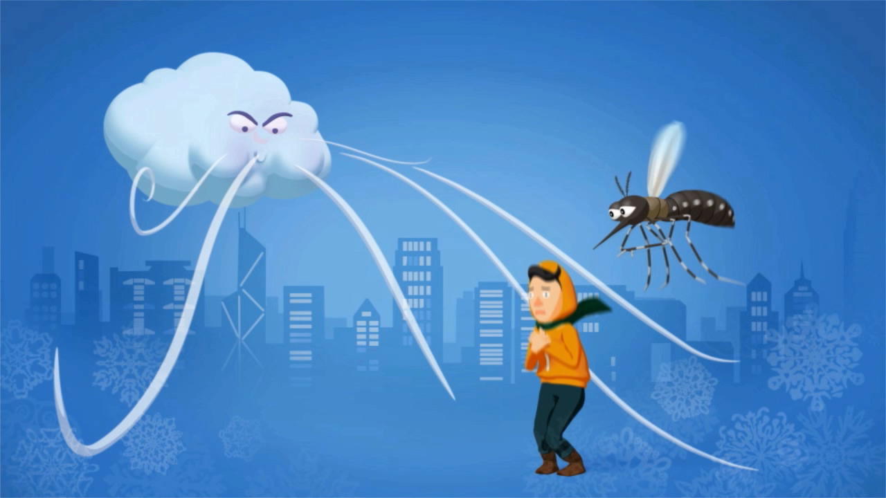 API - Anti-Mosquito Measures In Winter